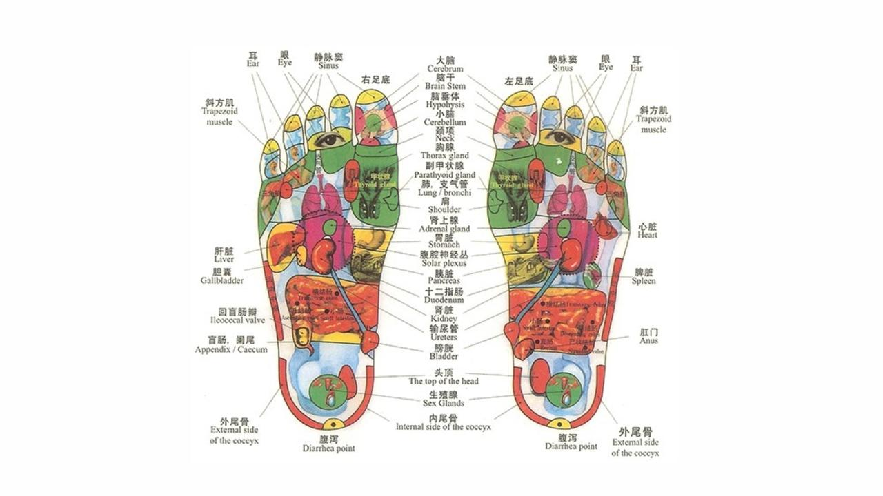 Jjpc2izqgy2hch7hempj chinese reflexology of the foot chart