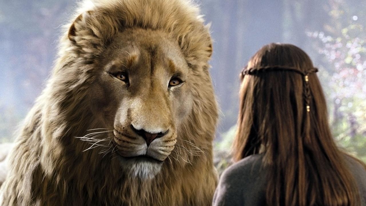 Zyuhur8otherga7em3iw aslan lucy reunion