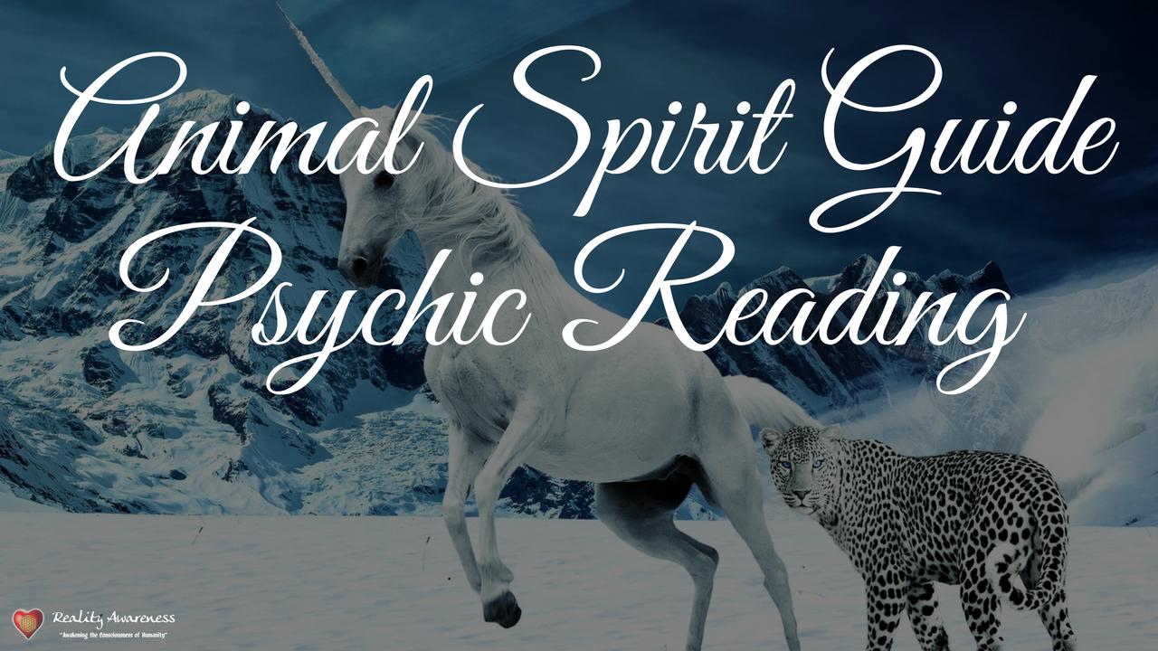 Gq85wipiqoqprptz8fnu kajabi animal spirit guide psychic reading