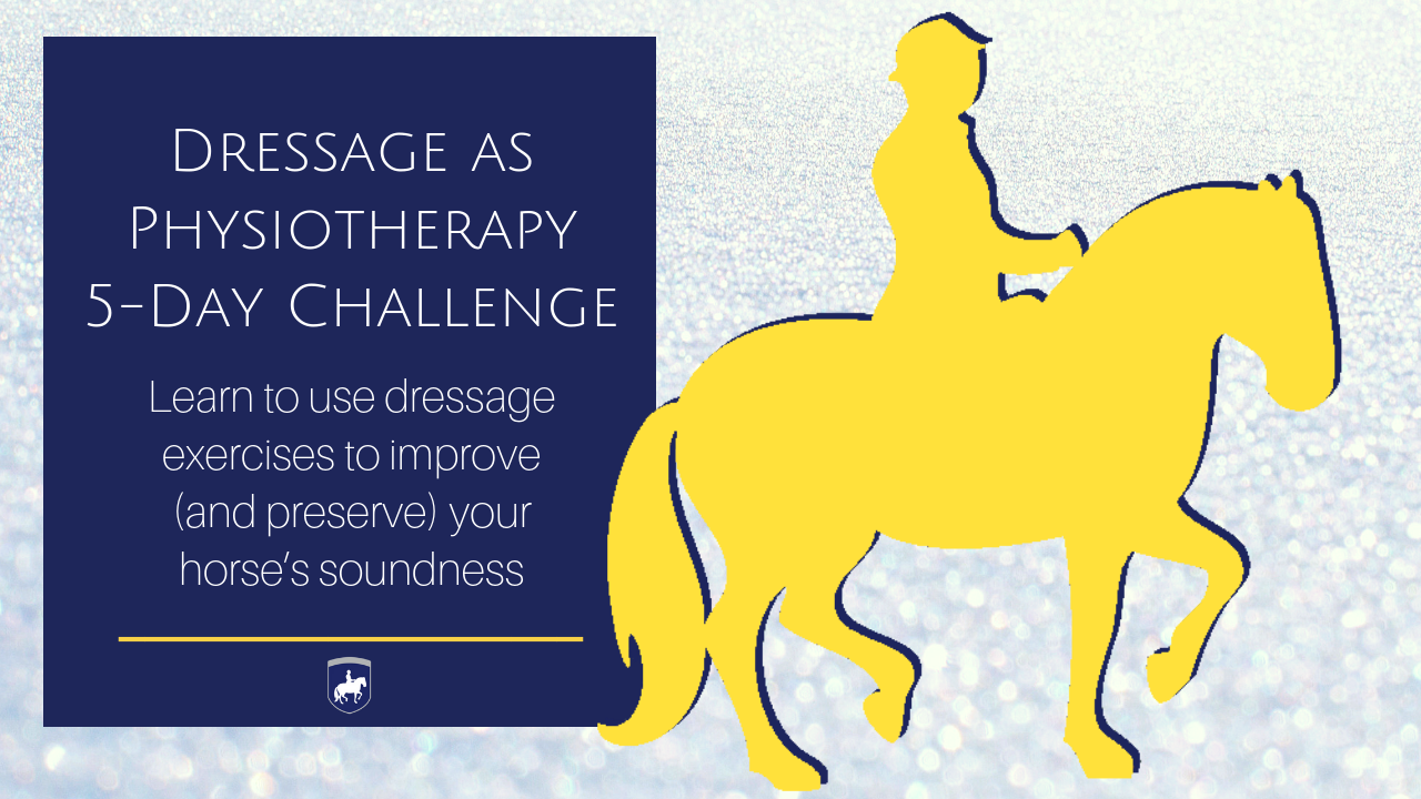 6bbhvputyousszgv7q01 dressage as physiotherapy 5 day challenge