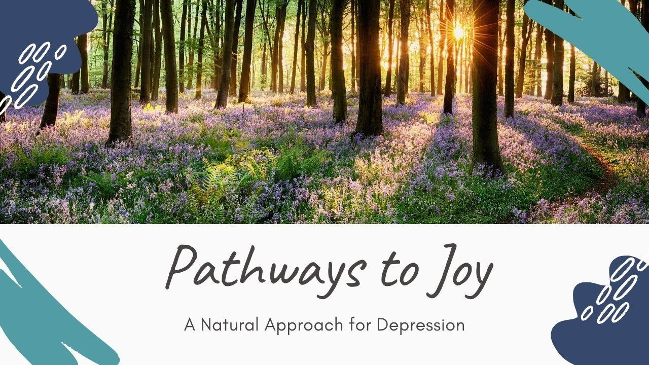 5ptenklns16dez2mbmcu pathways to joy a natural approach for depression.