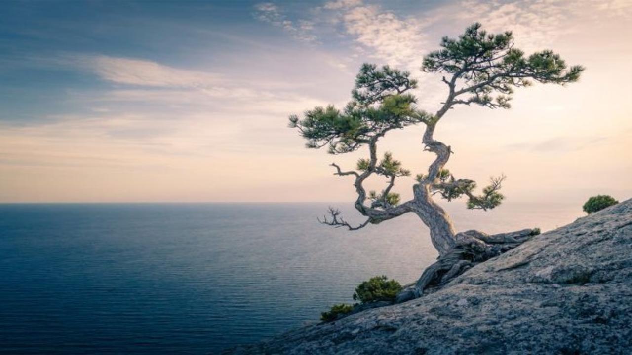 U6erwhcfrxuawidrwtoi what is mindfulness explained. 20 definitions that clarify ...