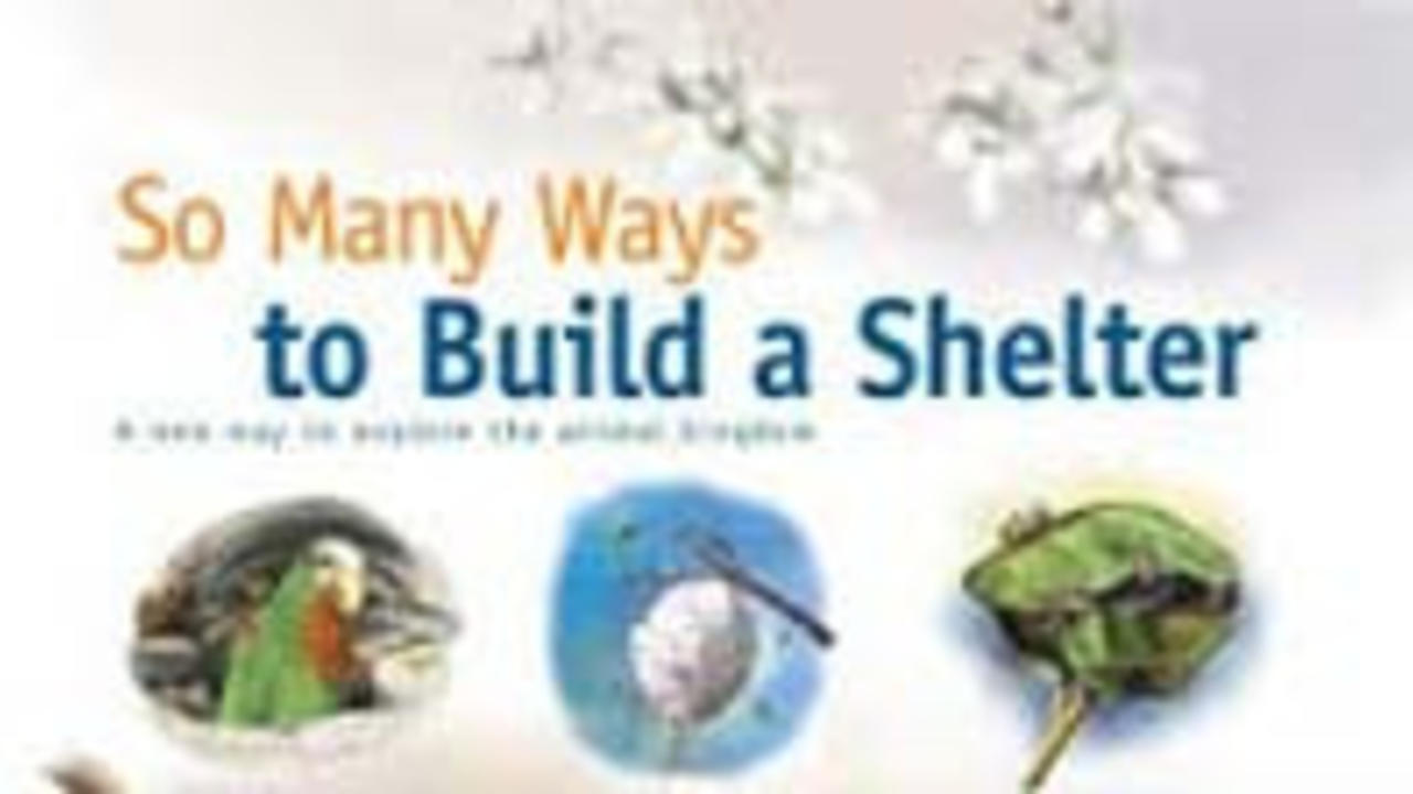 Kmoe6lmqx27xr6zqzaxg so many ways to build a shelter small