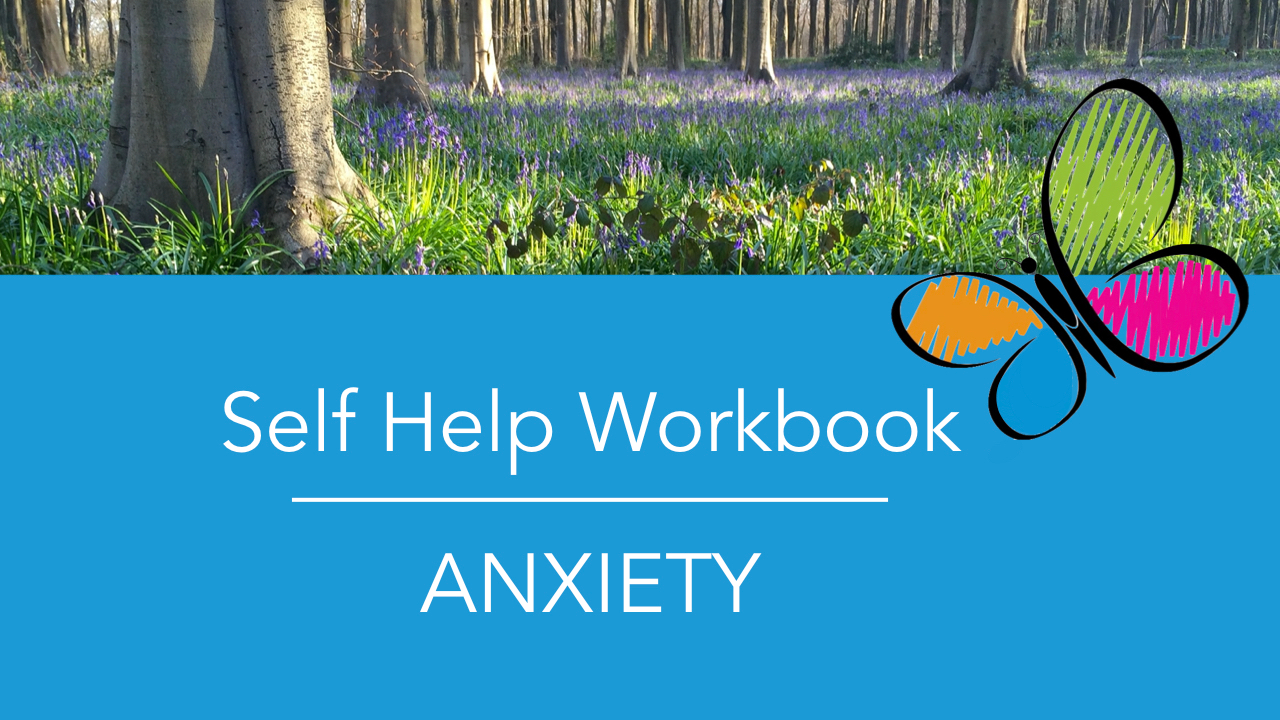 Bppk4viisggvvqmgvivl flows for life self help workbook anxiety