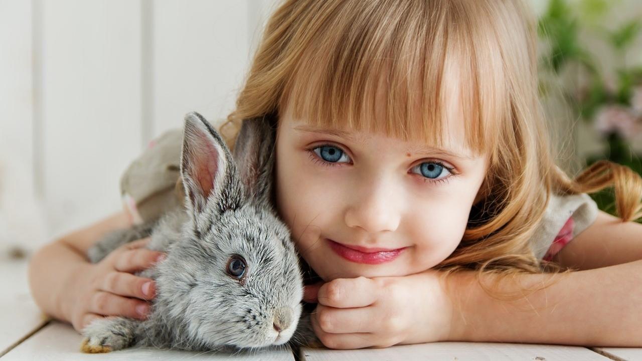 E0r6a7dotvkgki7glkg6 girl lying on white surface petting gray rabbit 1462634