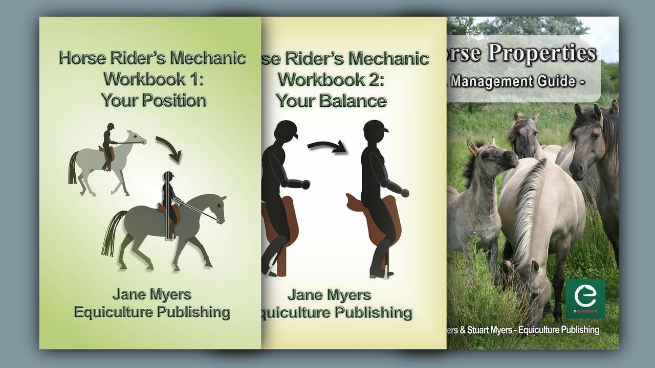 Wlyzygayr3osuqpcaiib three books