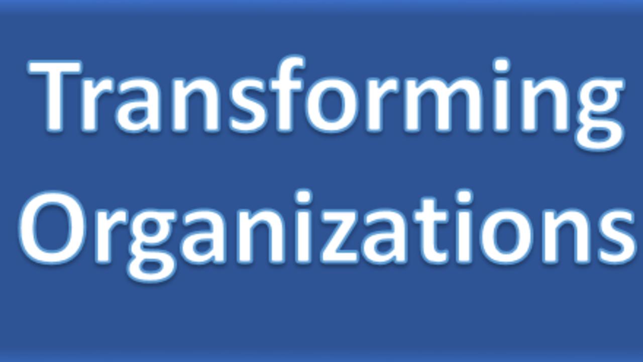 1lwa18hrzqpy5eiiusga transforming orgs