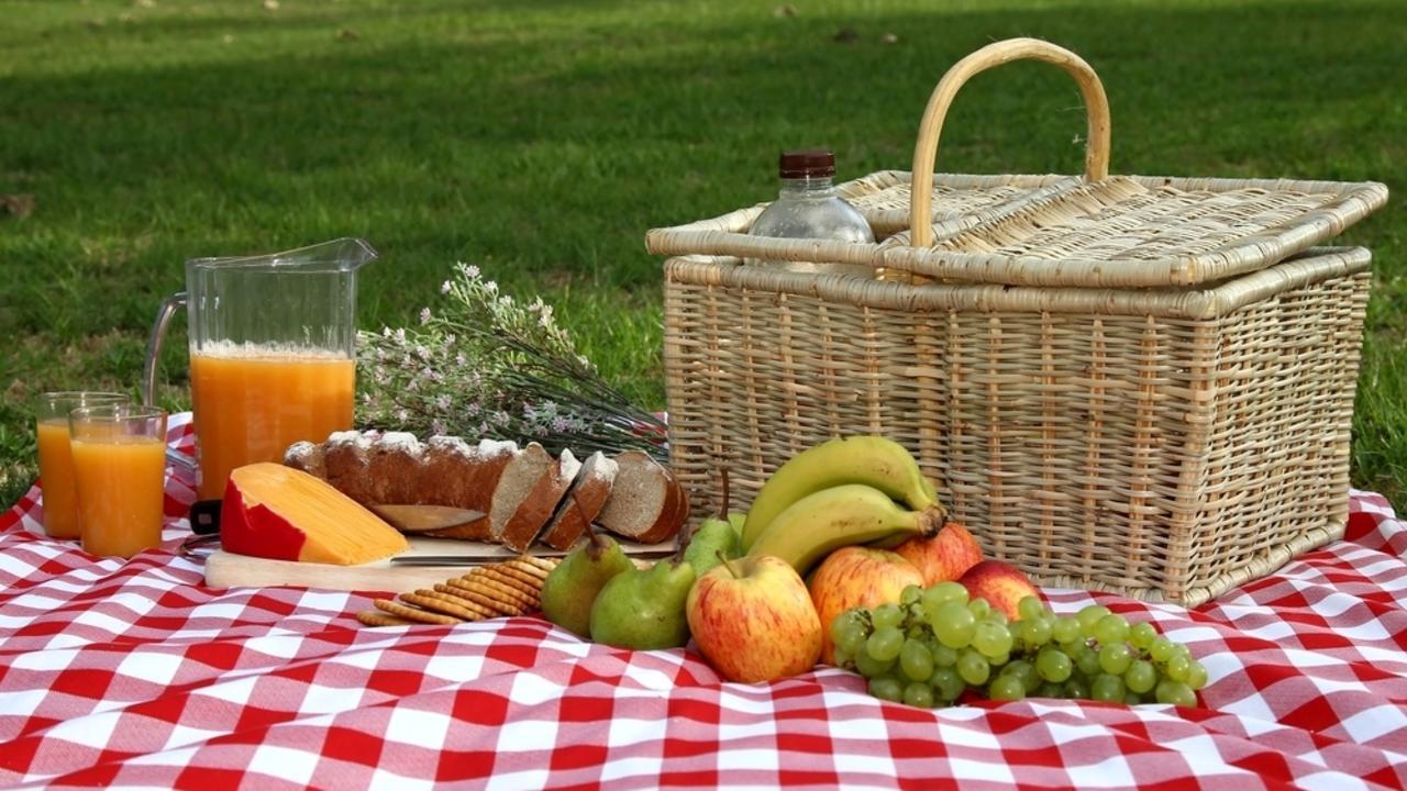 3jjapccjql2noii9y1oe a picnic with friends