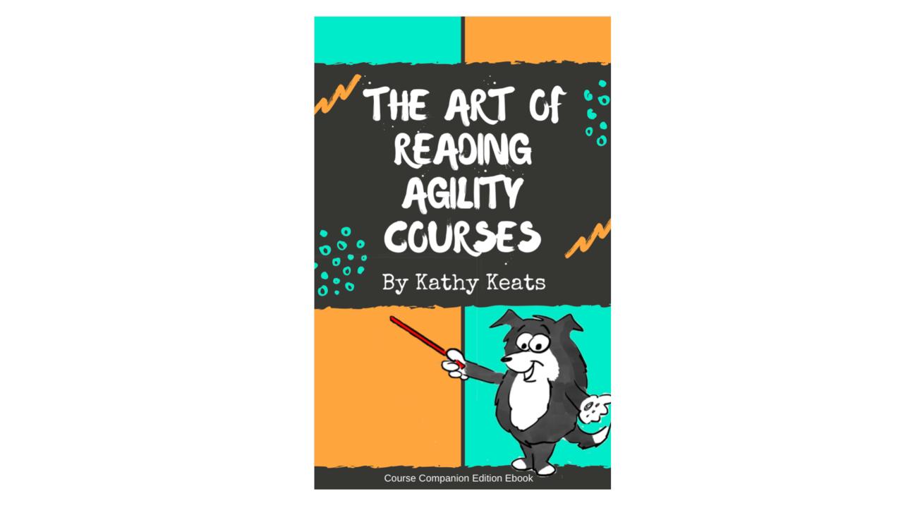 Sqlgndcqtg2ignyif4dg art of reading agility courses cover 1.2
