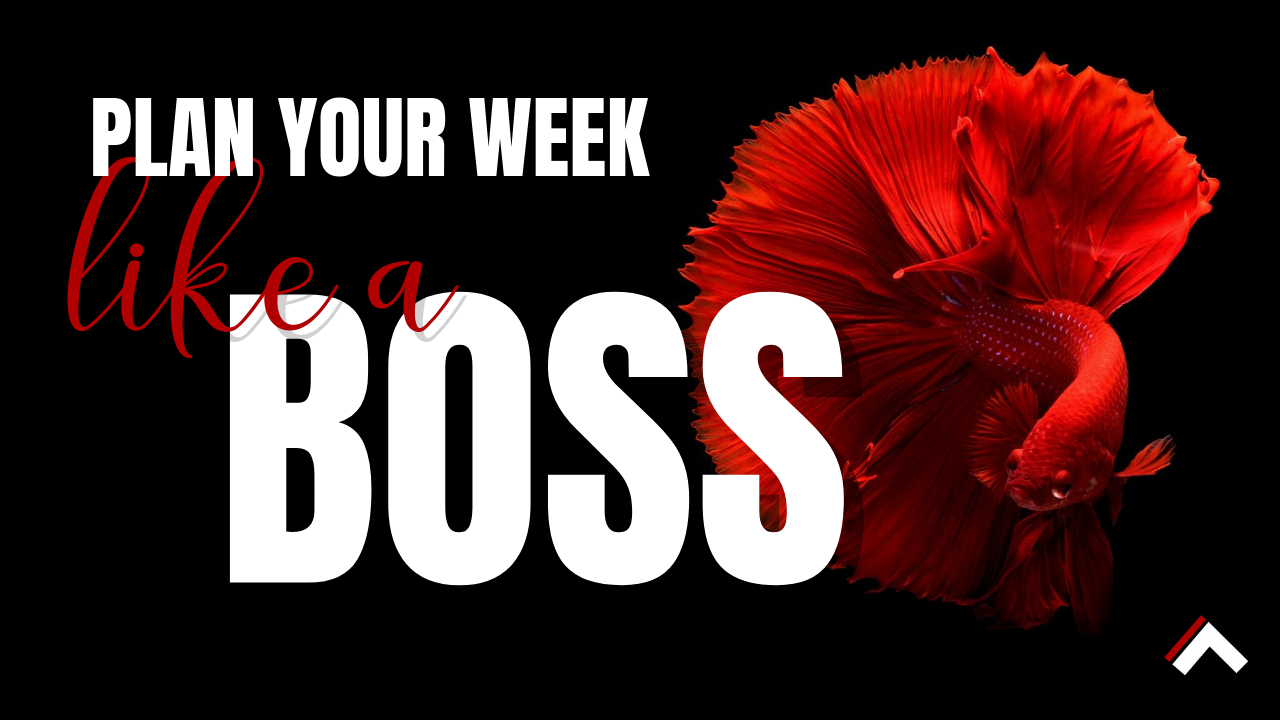 7vmry45gs8q1o8kw3l1r plan your week like a boss   thumbnails 2