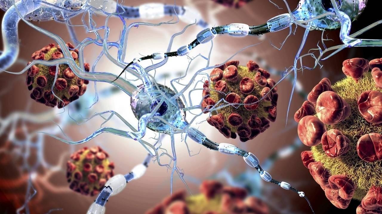 Bablnqumtzkh7xtm4qc5 ykl7ldursqkex0oo3zel autoimmune