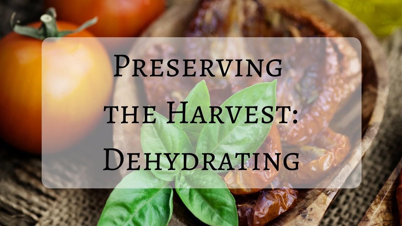 Clkwhdd7smewnoamenfh preserving the harvest dehydrating