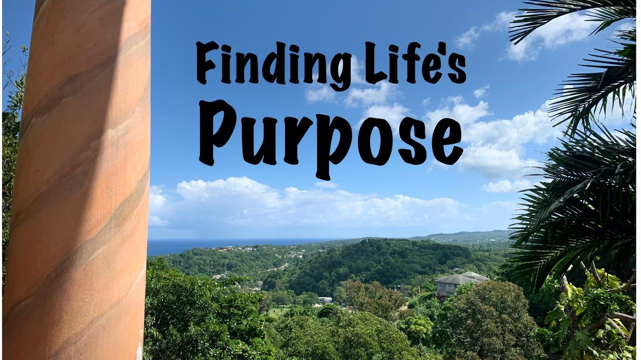 Gybzjxj9twwunqzx5cj2 finding lifes purpose meme