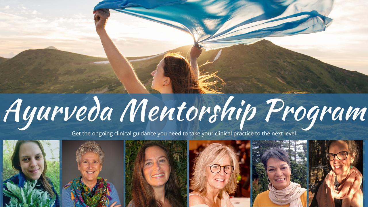 Evkwkvulr7gxqzepztzj mentorship header