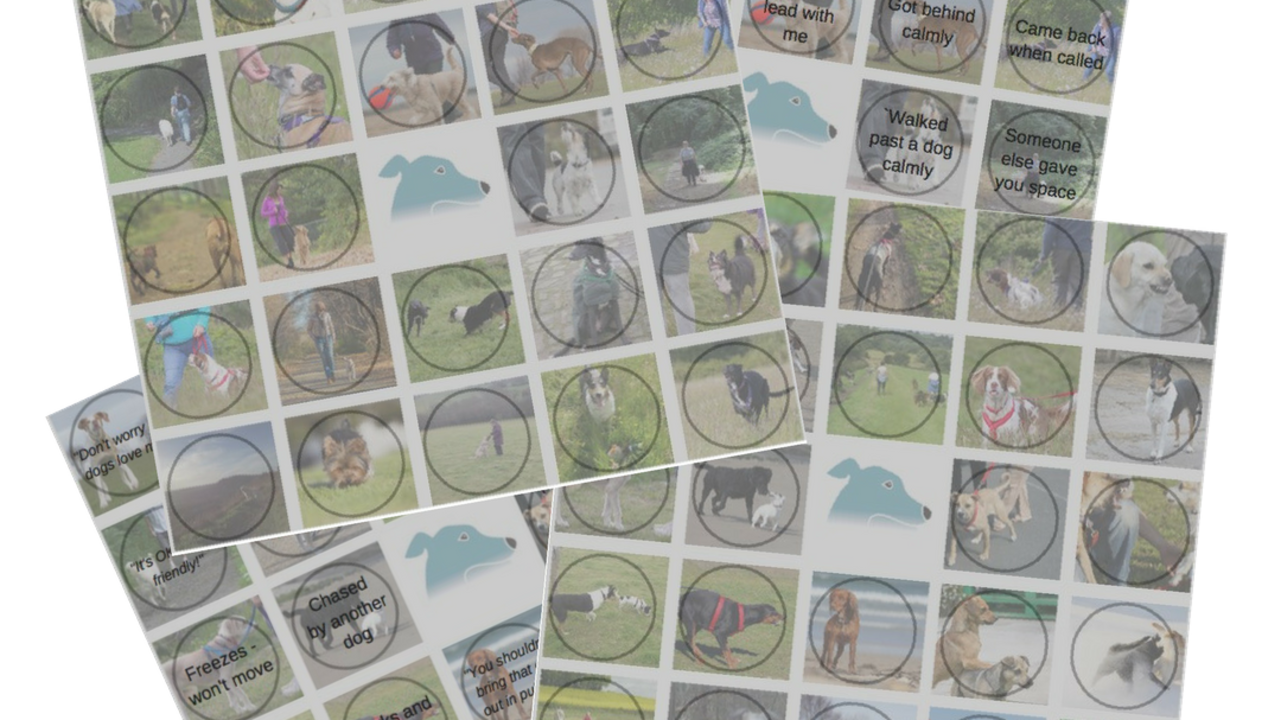 30d6nnzsza47mvlcjwrx bingo cards