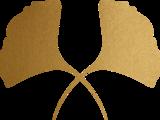 Yut8eju1qsik5rhewegf energyforexperts brandidentity final 08 gold