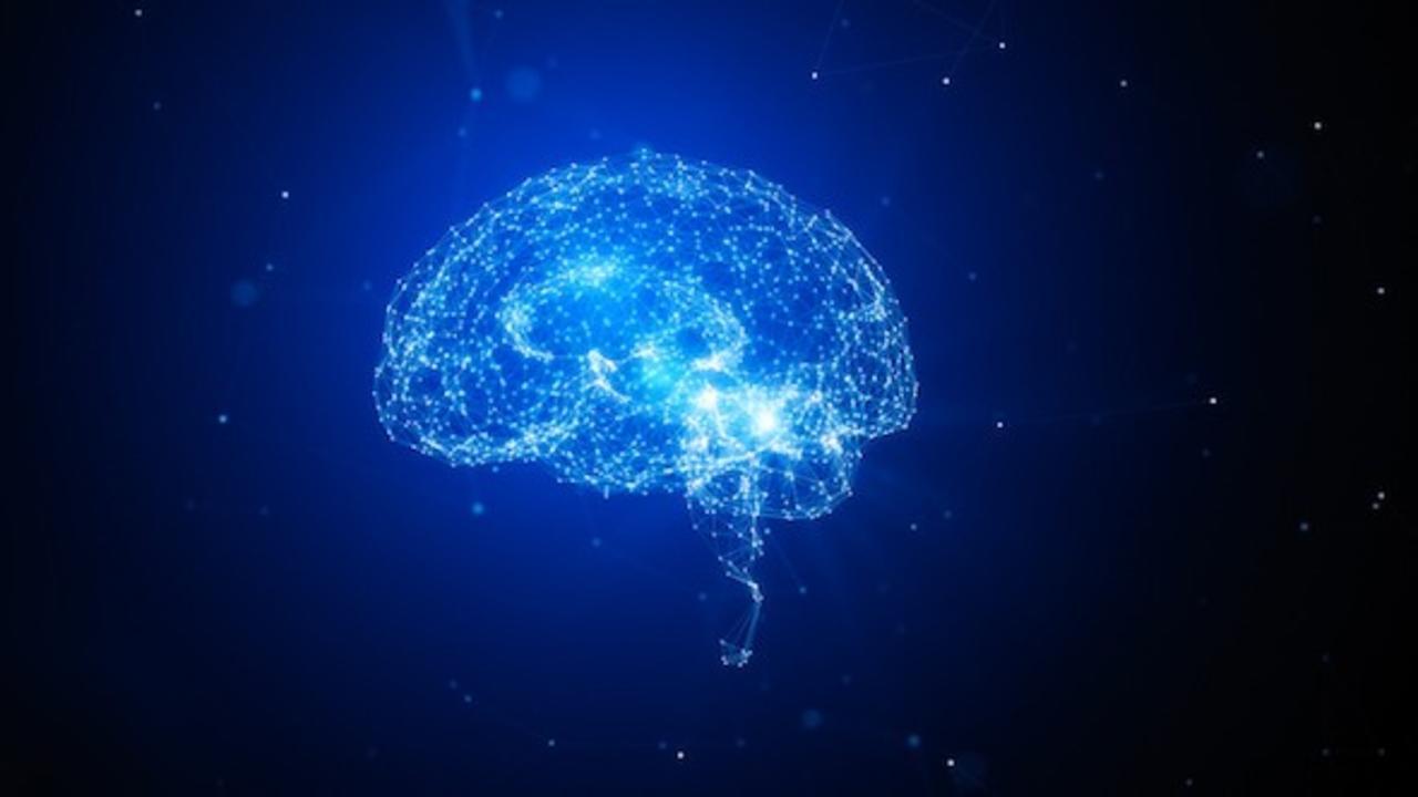 Faew1izms9m5uhrpd17k brain concept ai copy