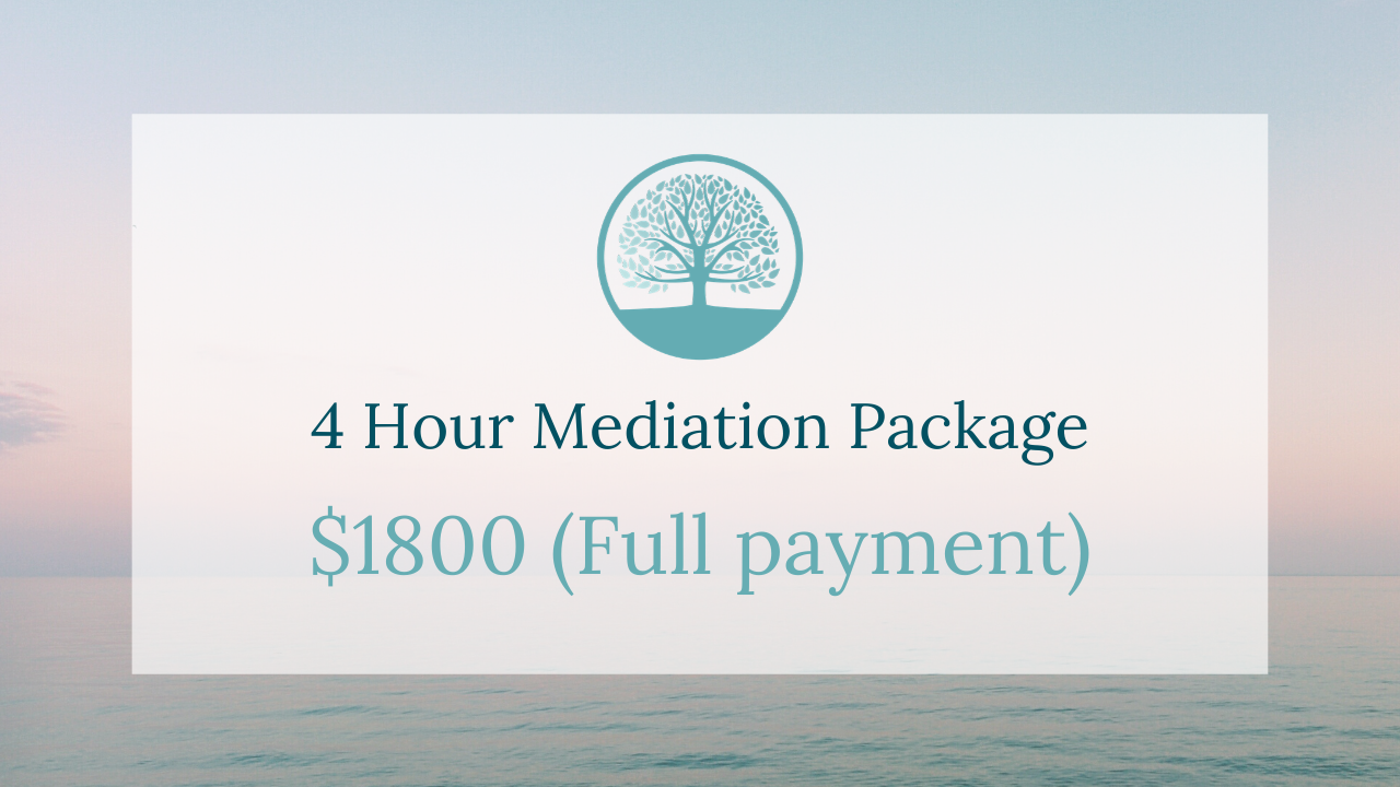 V02o1pxaqagv8qj8hicd 4 hour   full mediation package