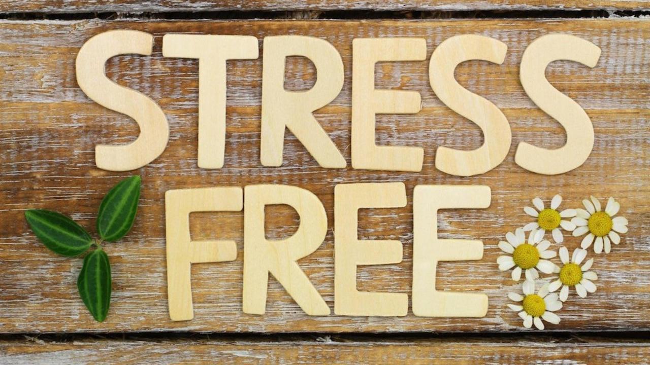 Seuufmq72154svizae4a jwtepp7tri2ac1uk5dvo stress free