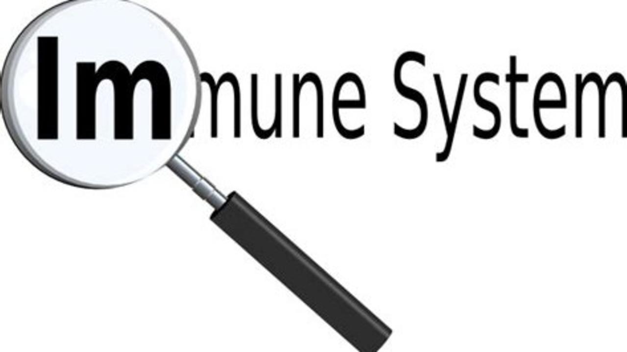 He9zganerv6dmsfvhteo immune system image