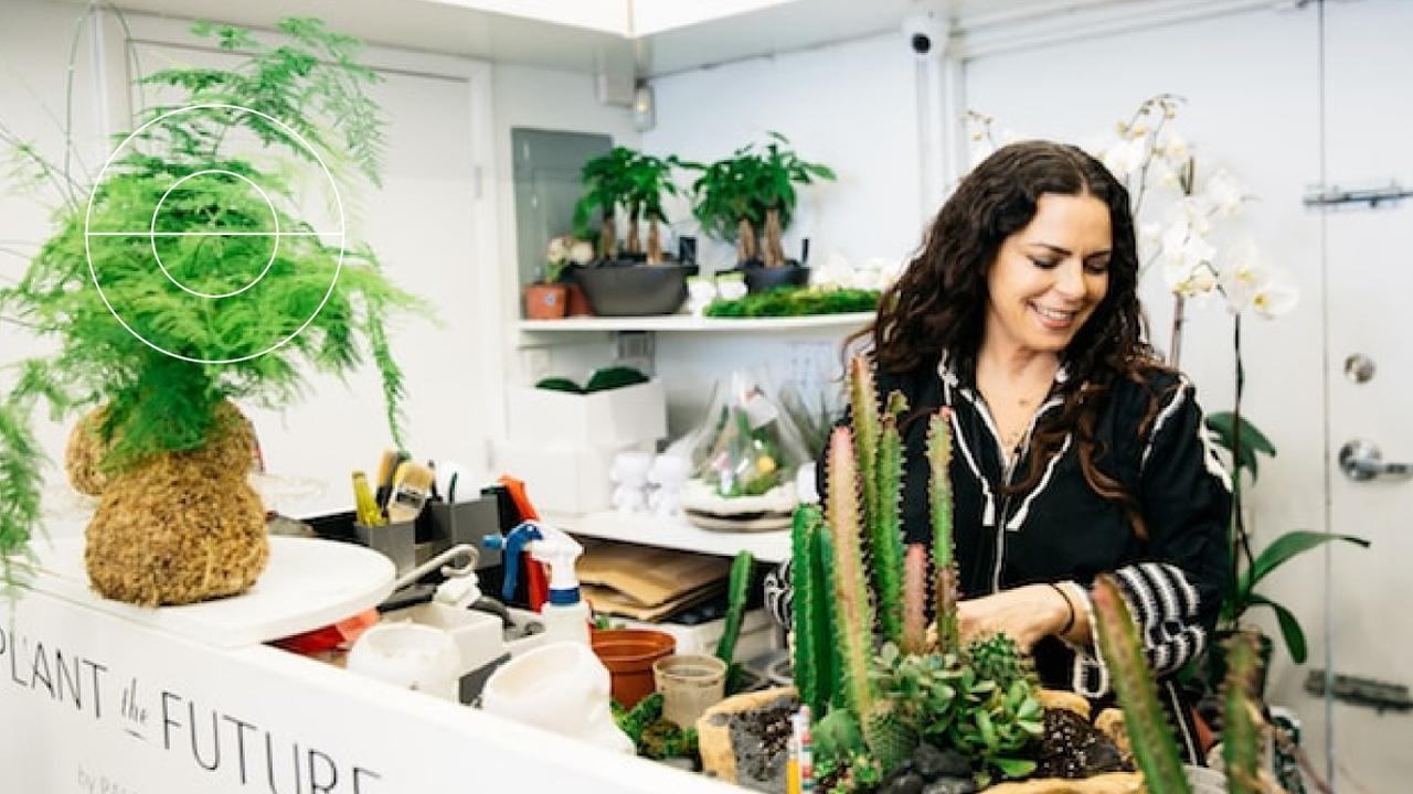 Wzfzibjsqysinb9odrs5 2 c mo decorar tu hogar con plantas paloma teppa offers 32