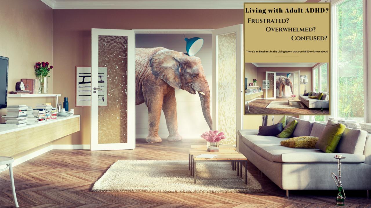 2mcszbzvqd6jthqyufxx elephant image for product