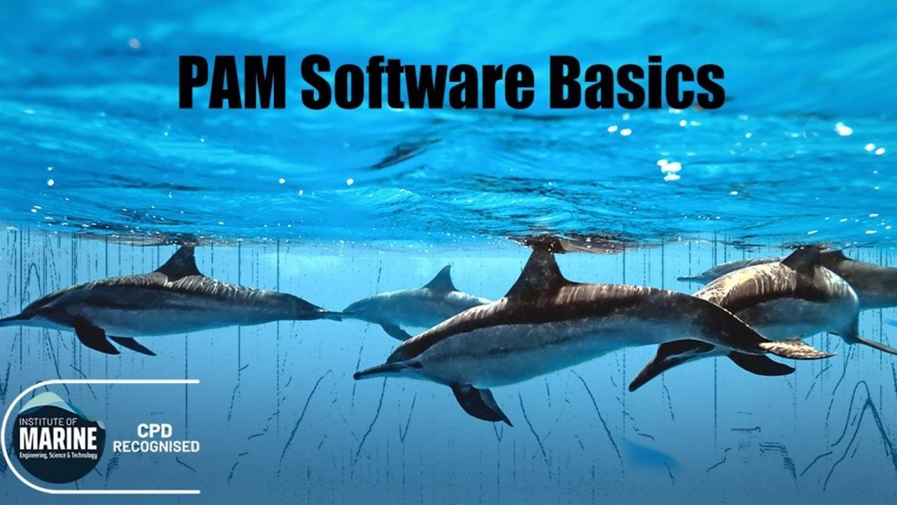 Gsvup2eesb8kjvb3btfc pam software final2 notext sm