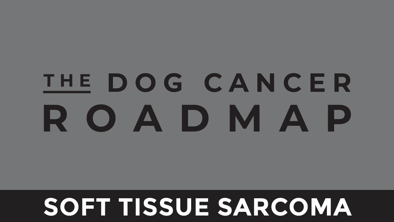 Kxkxbqxitvokkplkcdp9 soft tissue sarcoma