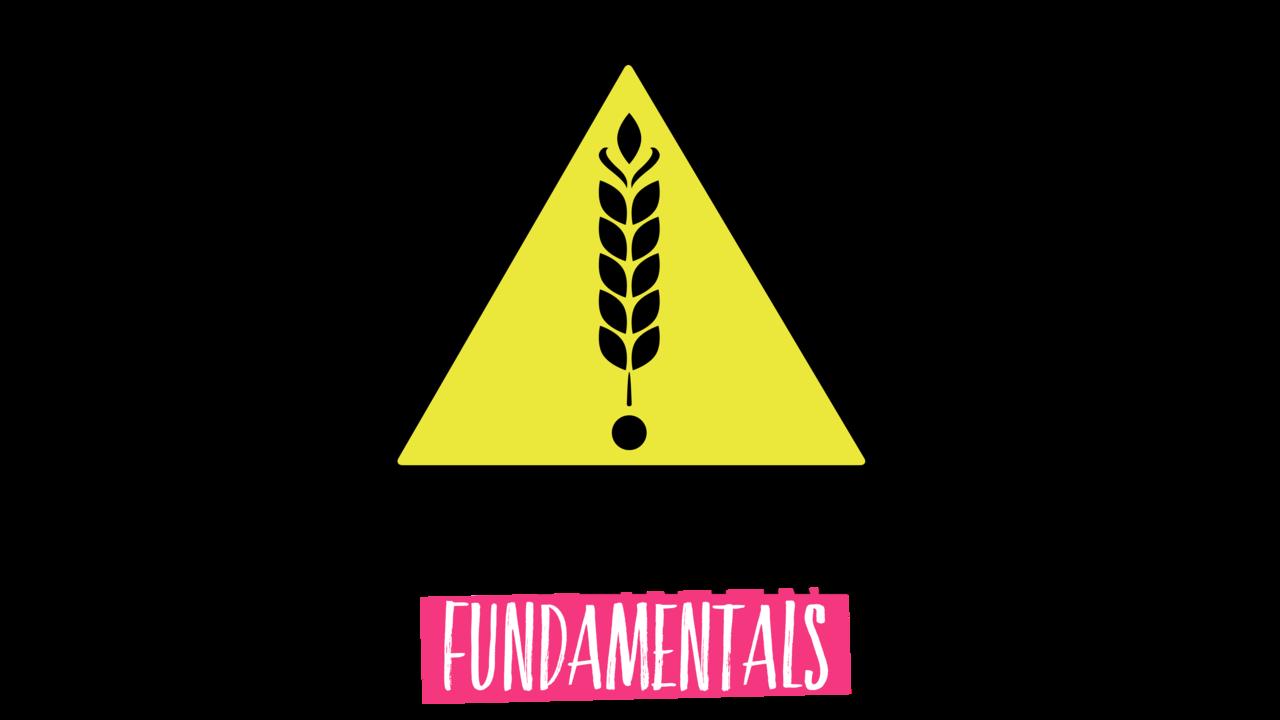 Ekl7jbpjshzacjr3bb2a erin sanderson gluten free fundamentals