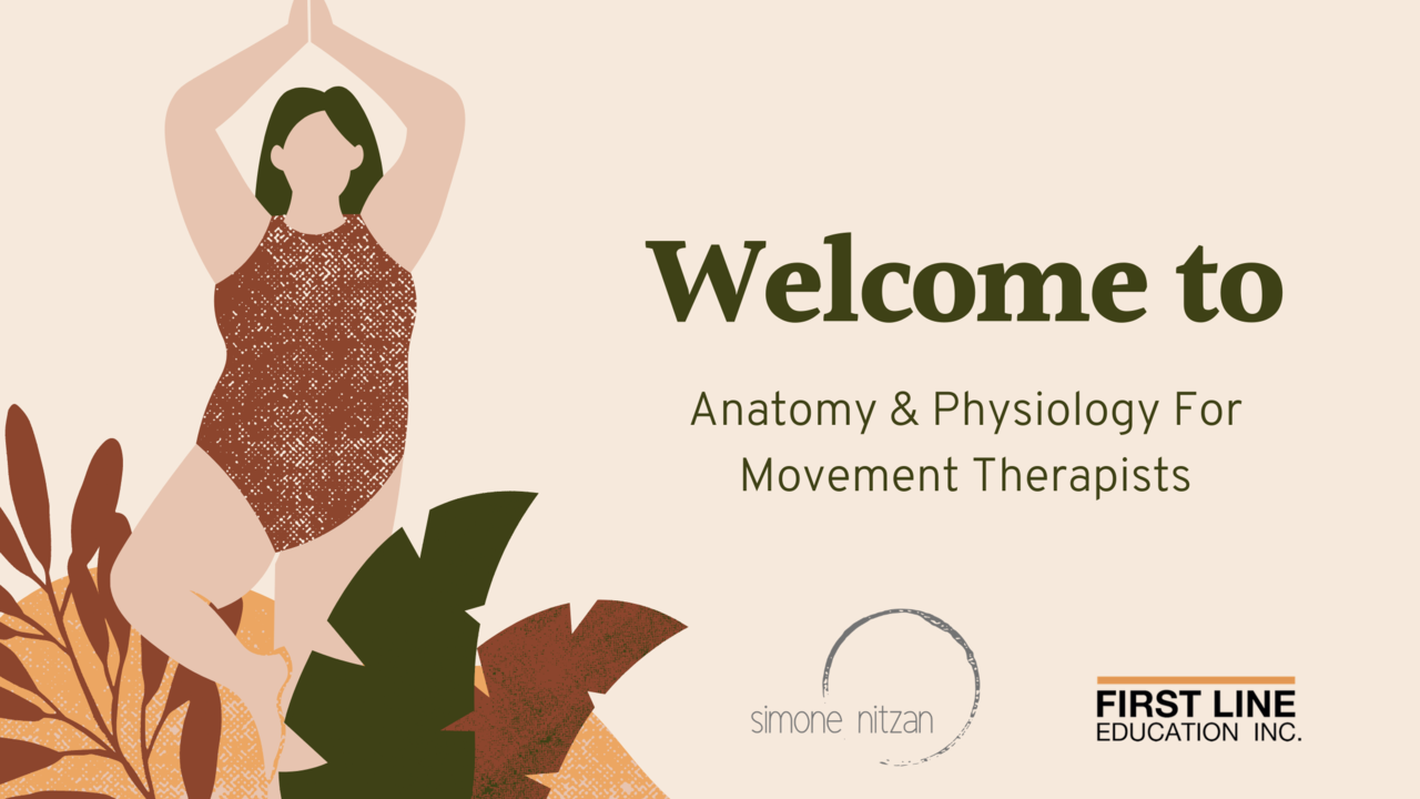 Ltmrgakq9ctt0filybsq post images   anatomy and physiology for movement therapists
