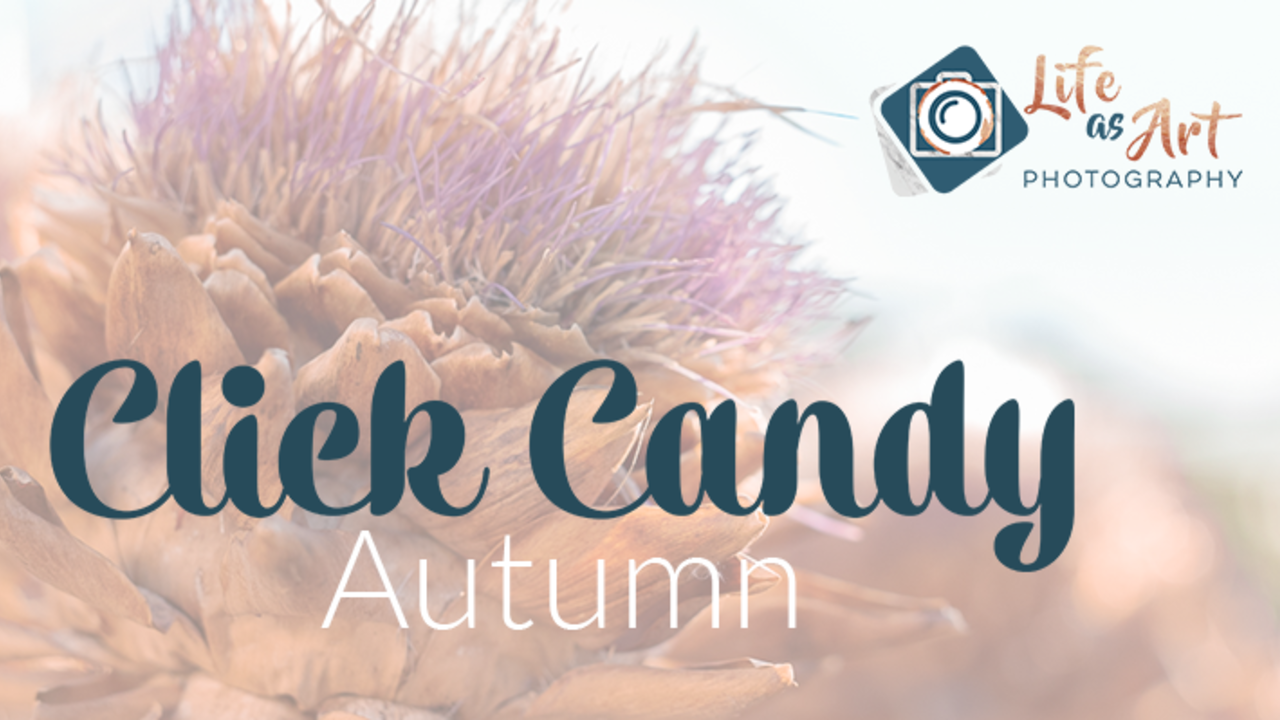 Xiqgxxgarbyoejnzqrxc click candy autumn