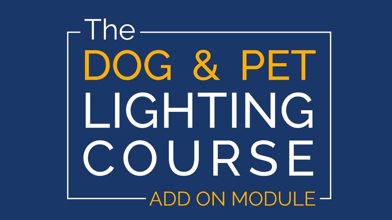 Oprriulqfgwabg3curba dog and pet lighting add on module stack 16to9