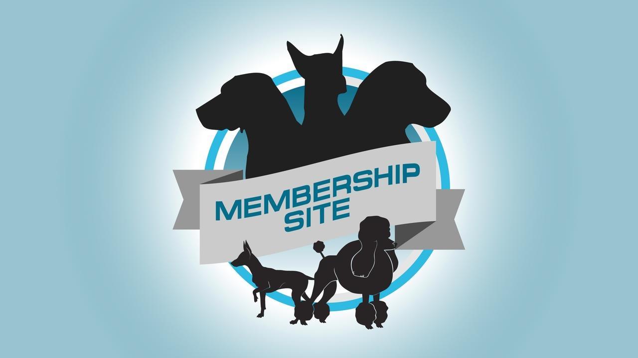 Ba0nzzkvs6ss1eoytavl graphics   logos membershipsite
