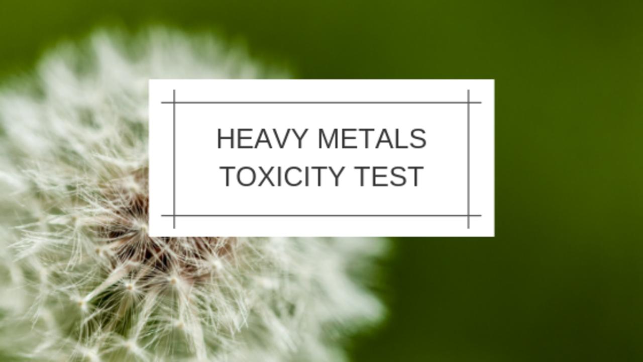 Gsbultq5sdckobzmib3o heavy metals test