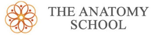 5wgfyetttfwu4pxgkewa the anatomy school horizontal logo