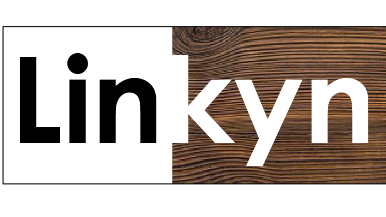 R6hzuu3zs4q6qfm1k46p linkyn logo.1