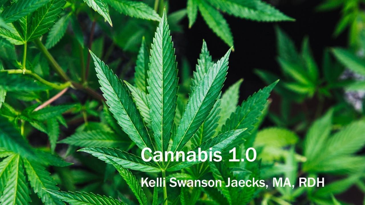 Xxfayuc5qeaggytbf1tk cannabis 10
