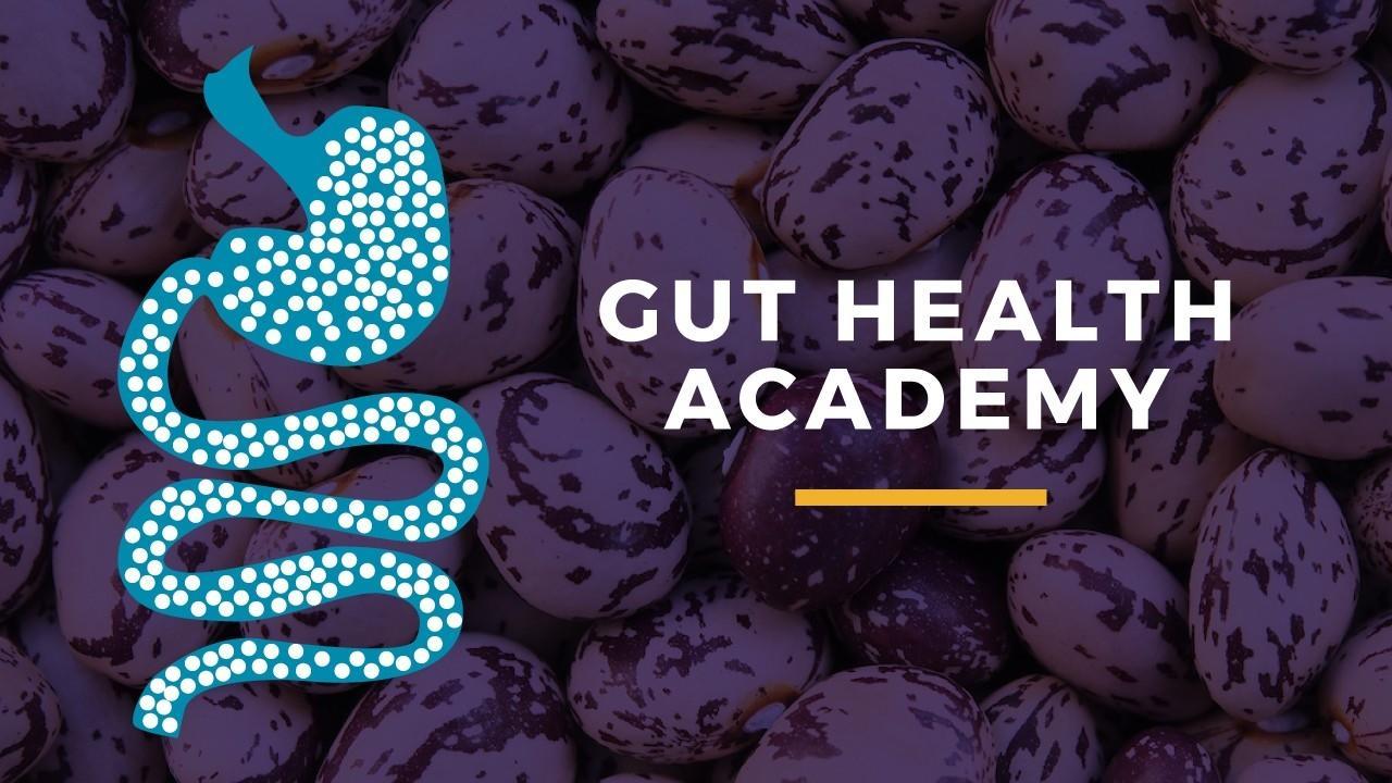 Qv4rx54usytsfz4pqdzq gut health academy