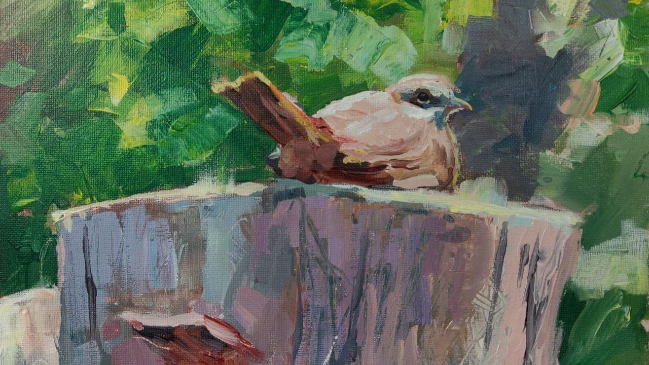 Eubfjlyeti2frkid0dli bird on stump painting