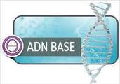 Czdw3zkqjq8csmld89xt adn base logo