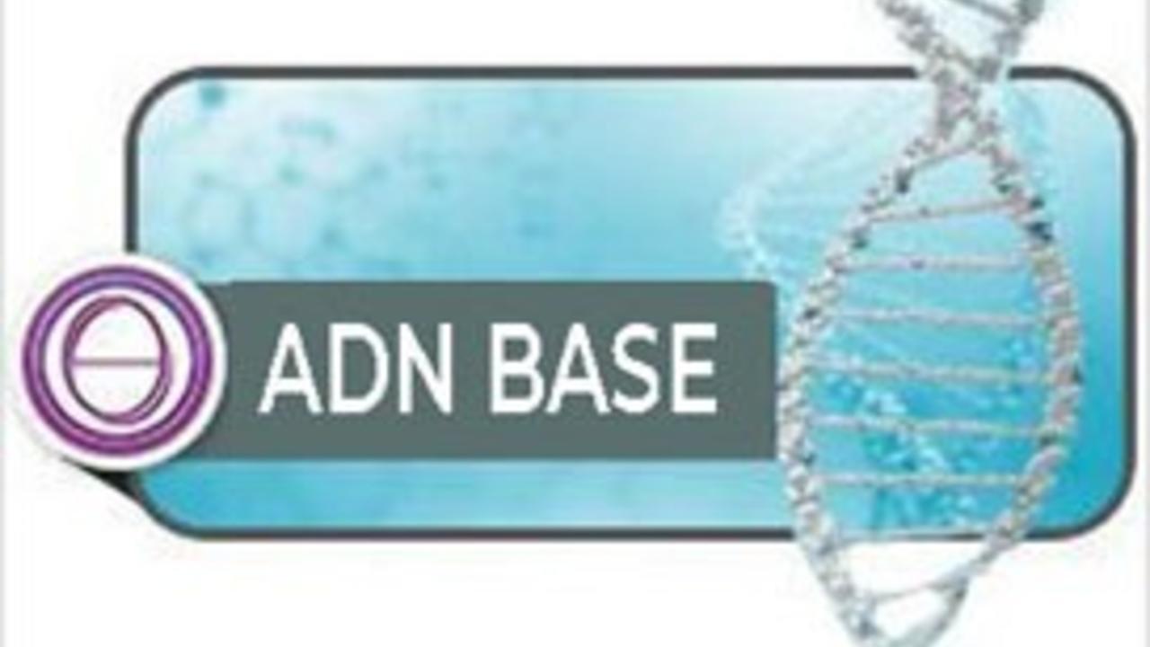Jvdg4wiqv2wavuhir64p adn base logo