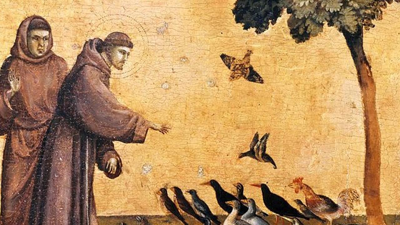 Magtkq8shshegcpugdcn giotto francis preaching to birds