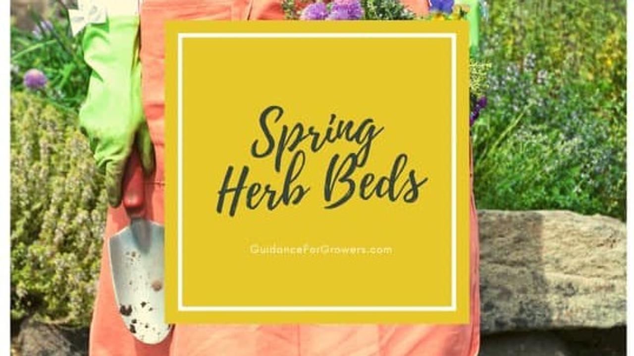 Los6klt0rlcuxzzn0rai spring herb beds story slide 1