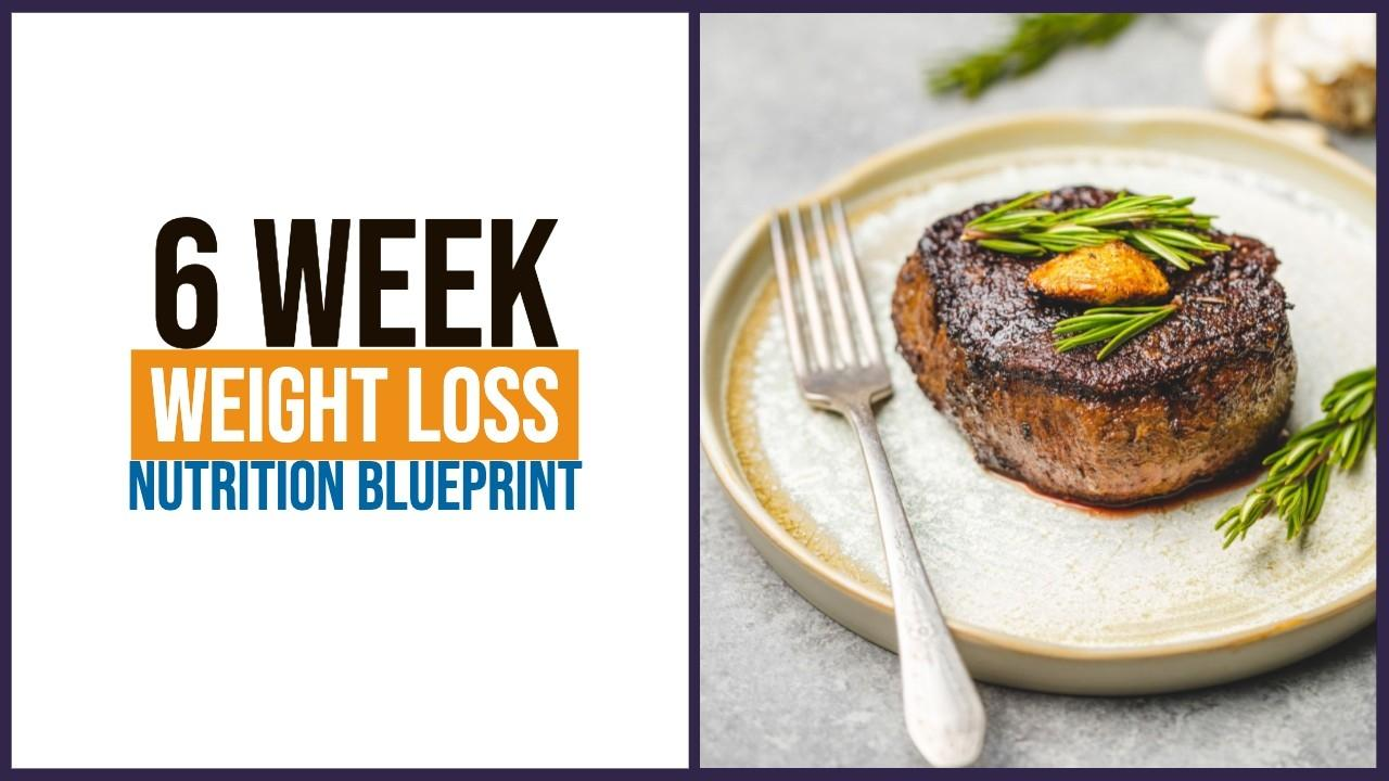 Lwg9qvszq9szvhsf0bjn weight loss nutrition blueprint