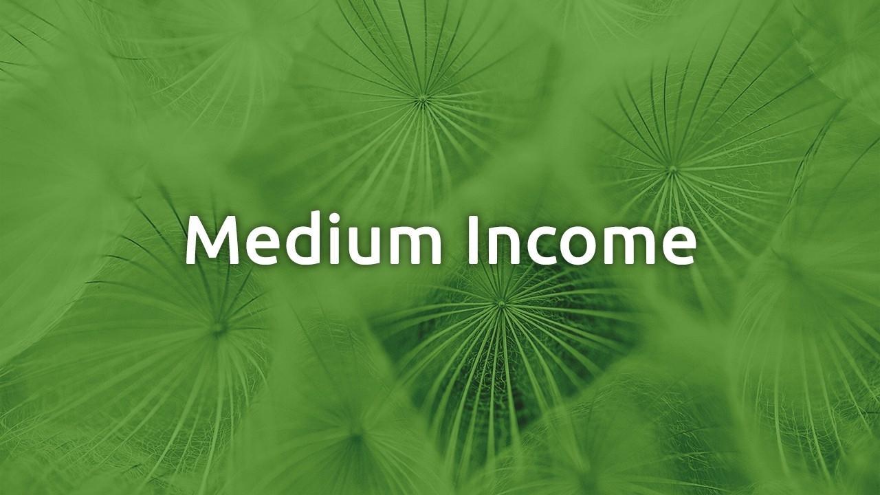Gco2dmmrreikwrzzw8yn medium income
