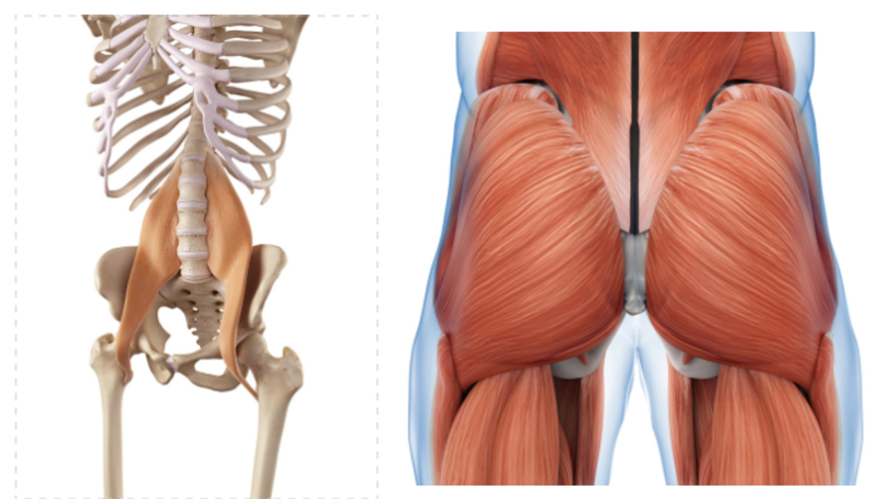 Corrective Exercise Strategies for the Psoas and Glutes