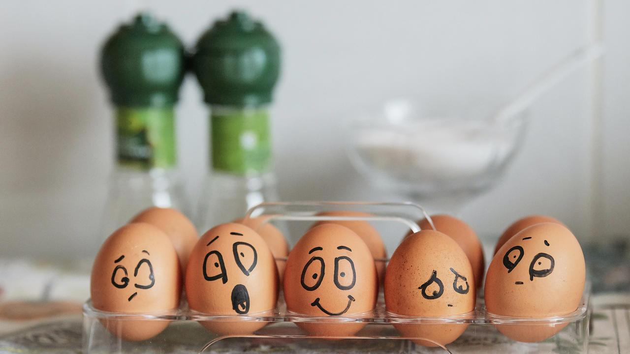 Sfa9t6pr2cxaugml2m8e eggs