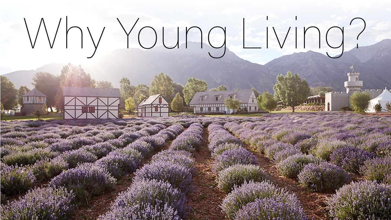 Xdldtanks9qdxscixyoj why young living slide presentation