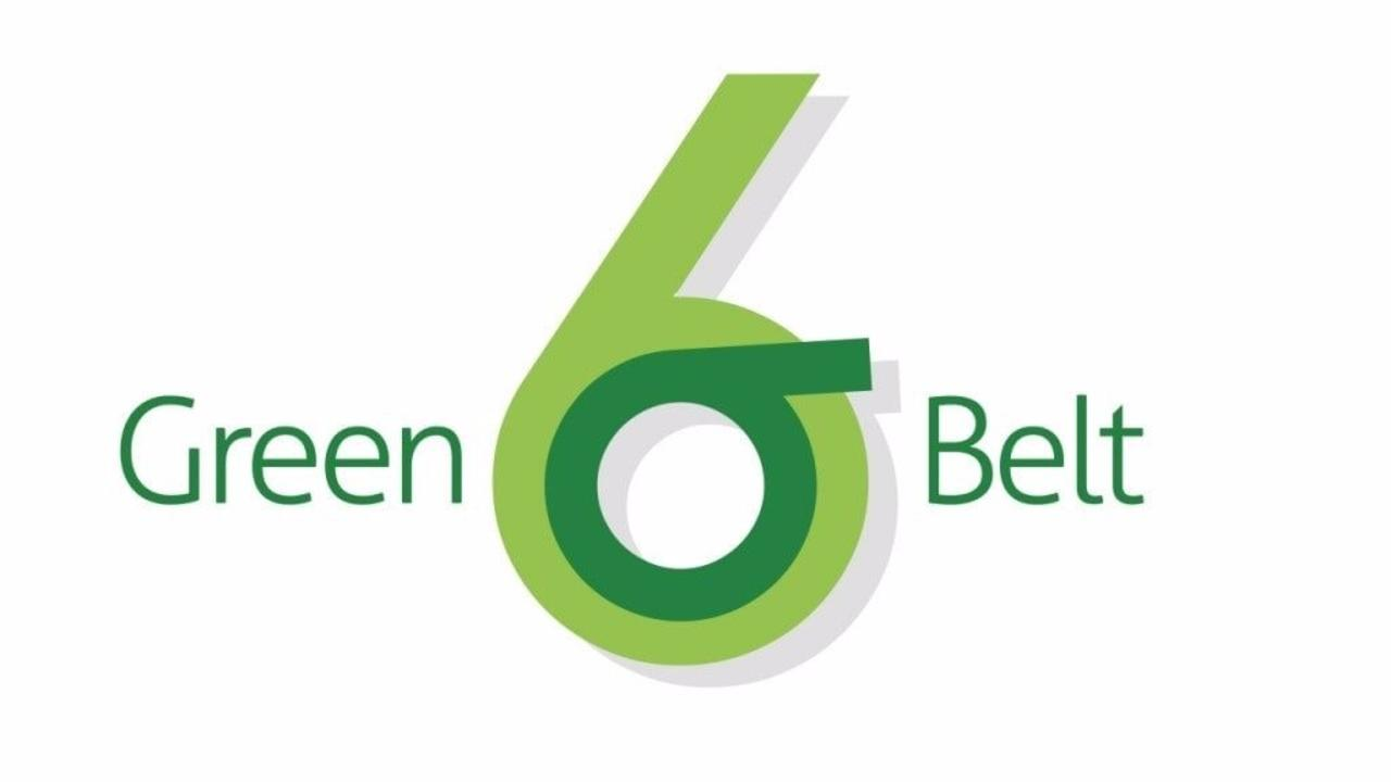 Six sigma green belt 1betcityfo Images