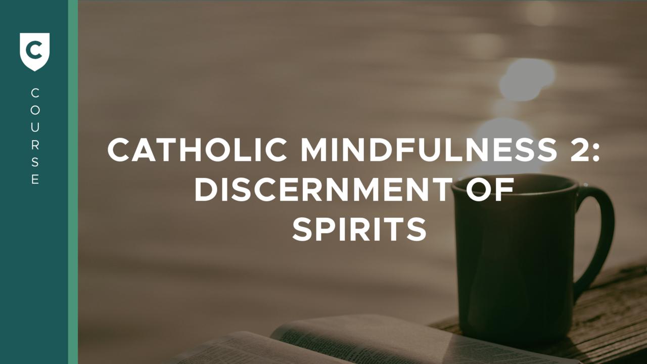 Vnqahpitt6i3zd9did8v catholic mindfulness 2 cover